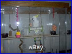 Amazon Cage, for Medium to Large Birds, Parrots, and Macaws with BLACK BASE