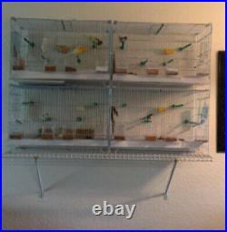 Large 4-Stack Breeding Bird Flight Stand Cage Canary Aviary Dividers Combo Set
