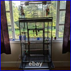 Wrought Iron Large Flight Bird Cage with Wheels Play Top Pet Parrot With Stand