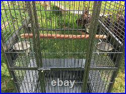 X-Large 28W x 22D X 77H Lodge Open Play-Top Parrot Bird Wrought Iron Cage